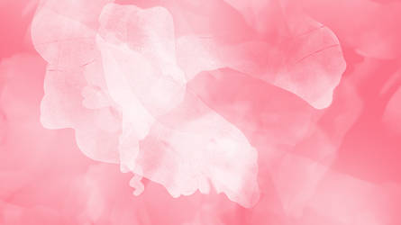 Large Pink Paper Textures by websparkle