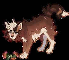 lupine bloom by aleskay