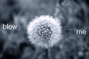 blow me by maoweb