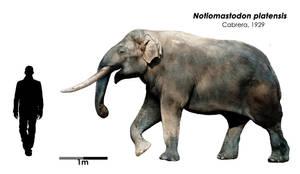 Notiomastodon platensis by Bran-Artworks
