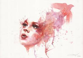 Red Bird by Blue-birch-insight