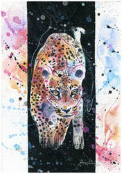 Cheetah by Blue-birch-insight