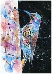 Bird by Blue-birch-insight