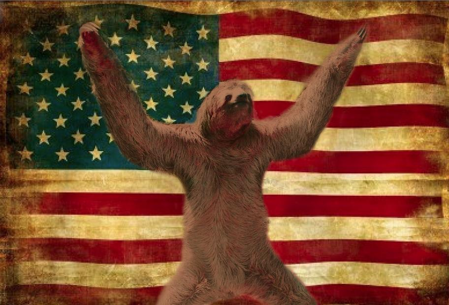 Sloth Murica by curtsibling