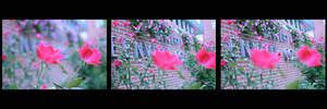 OMG Flowers by Nekosxe