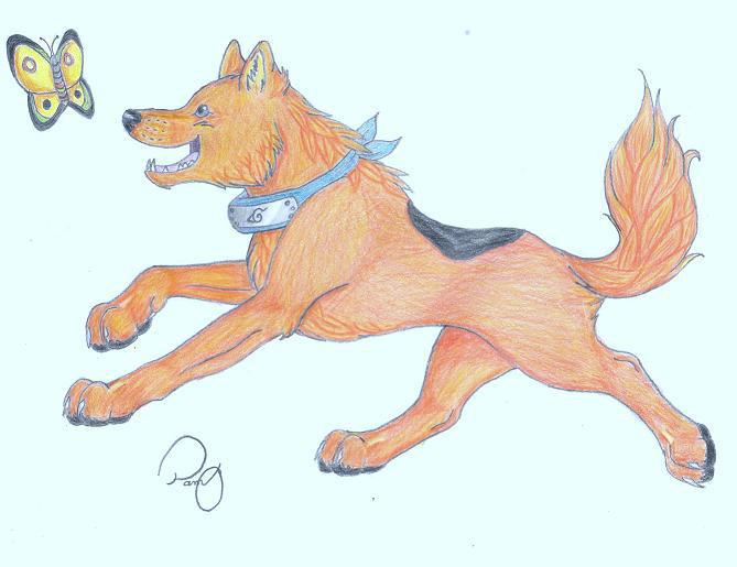 Orange Wolf By Minakowolf37 On Deviantart