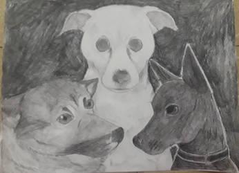 Dogs by ShadowWip