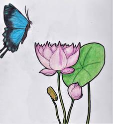 Lotus Butterfly by ShadowWip