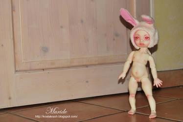 Muride I by Koala-Creation