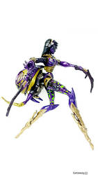 Beast Machines Blackarachnia by Cadejo22
