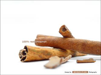 Real cinnamon by Genecatcher