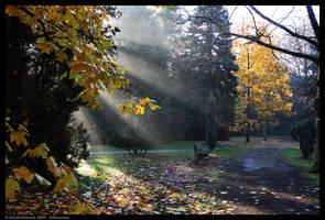 Arboretum 1 by EricForFriends