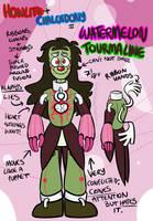 Watermelon Tourmaline (Fusion) by CircusCavalier