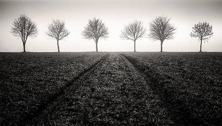 Encounter by marcschmidtmayer