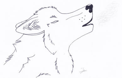 Wolf Howl (lineart) by enzovoort