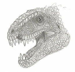 Dimetrodon Grandis by Son-of-Italy
