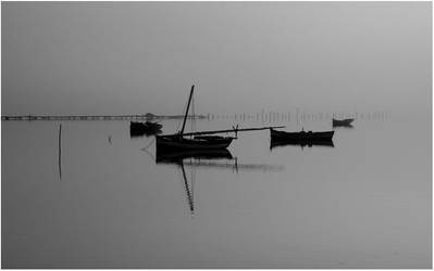 Morning Fog II by 2beers