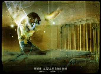 The Awakening by trappedillusions