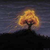 Burning Bush by hectigo