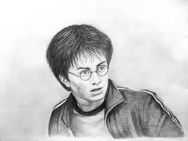 Harry Potter by zionrules