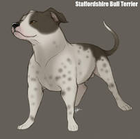 Staffordshire Bull Terrier by Nyaasu