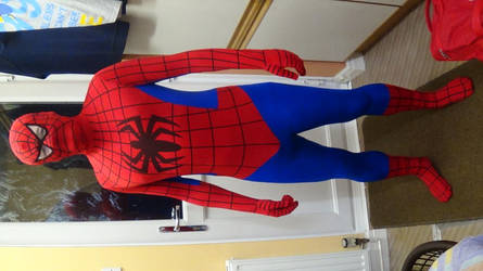 Spiderman cosplay by Dickywebster