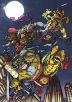 TMNT - Teenage Mutant Ninja Turtles by VallyFran