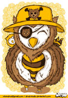 pirate owl by drud-studio