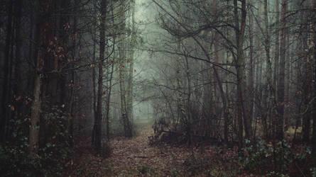 Silent trees by kriskeleris