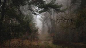 Eerie memories by kriskeleris