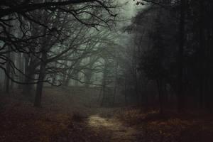 Shadows still remain by kriskeleris