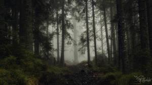 Wandering the dark paths by kriskeleris
