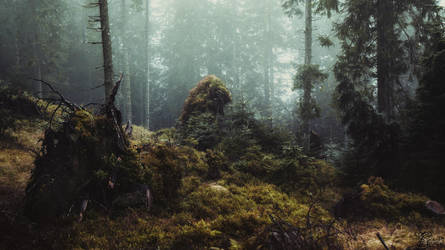 Home of the wild things by kriskeleris