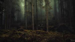 Fairy tale gone wrong by kriskeleris
