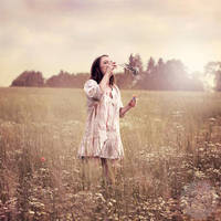 fairy paradise by photoflake