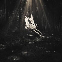 light and dark by photoflake