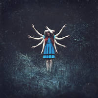 hidden hero by photoflake