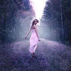 fairy land by photoflake