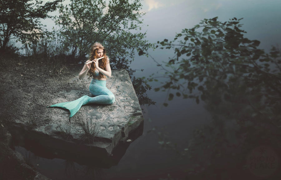 Take me to the ocean by photoflake