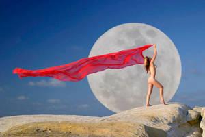 Cheetah's Moon by Ozphotoguy