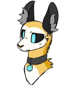 Arvticfox's Profile Picture