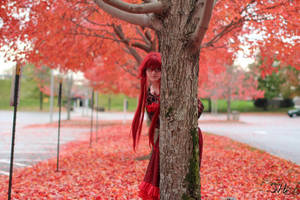 Ballgown Grell Fall Shoot 3 by TheCosplayVlogger