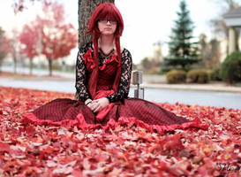 Ballgown Grell Fall Shoot 4 by TheCosplayVlogger