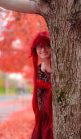 Ballgown Grell Fall Shoot 5 by TheCosplayVlogger
