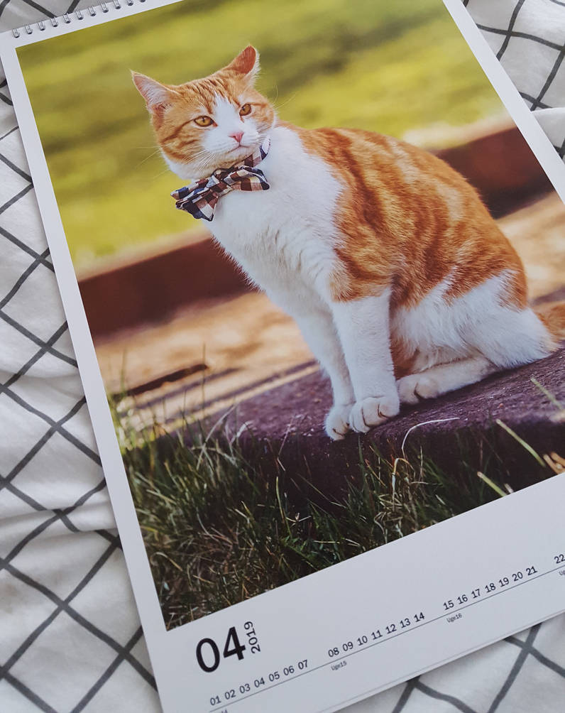 Oliver Calendar by Onistocke