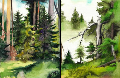 Travel diary - forests by SarkaSkorpikova