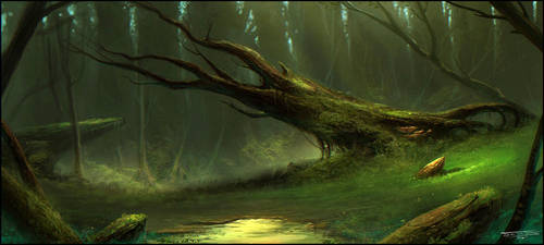 Swamp by dominuself