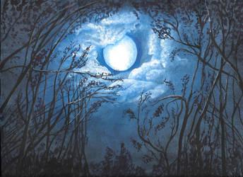 Moon Night by IndigoKrow