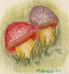 Mushroom doodle by roslaug