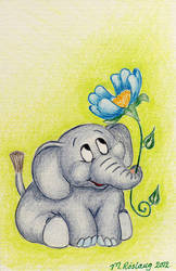 Baby elephant with a flower by roslaug